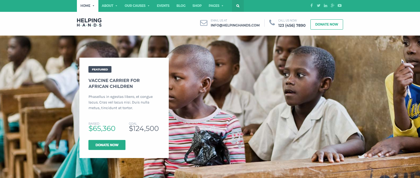 HelpingHands-Helping-Hands-Premium-Non-profit-WordPress-theme-WPreviewteam