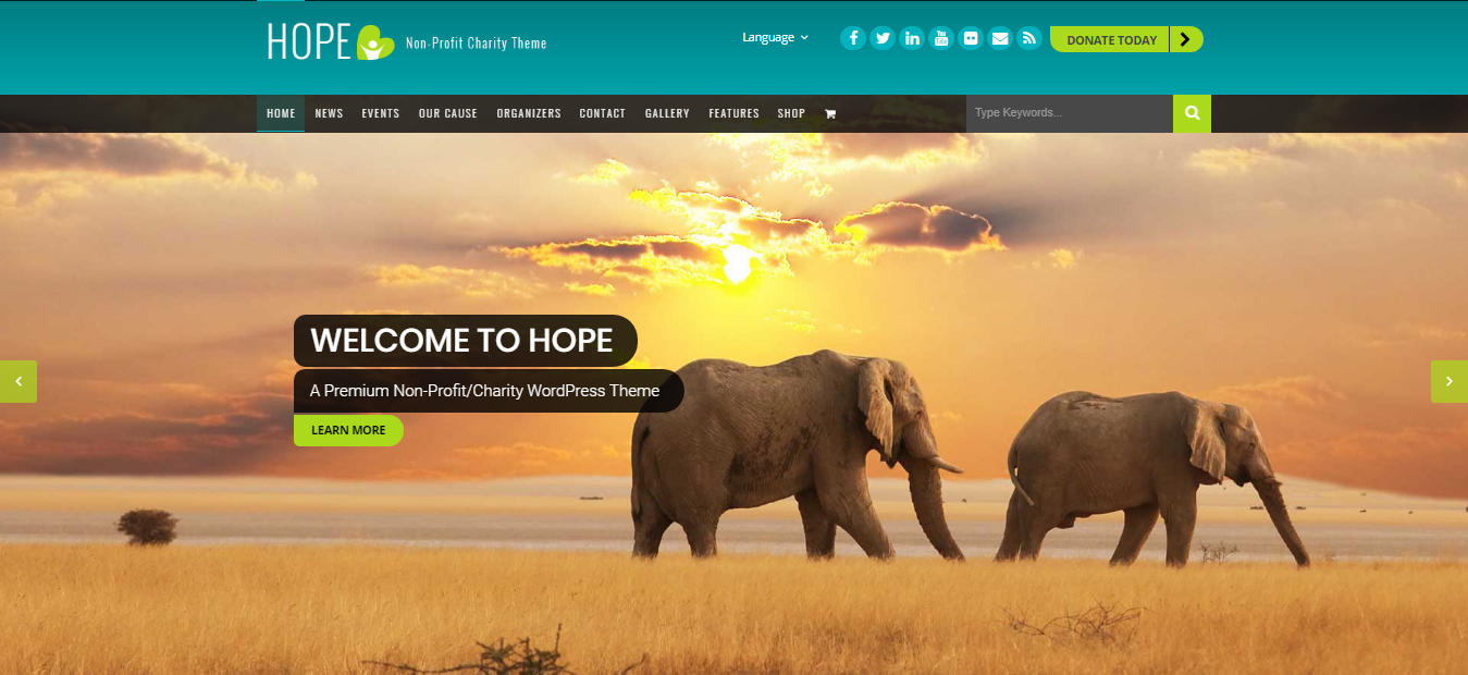 Hope, Hope Premium Non-profit WordPress theme, Best Non-profit WordPress themes of 2018