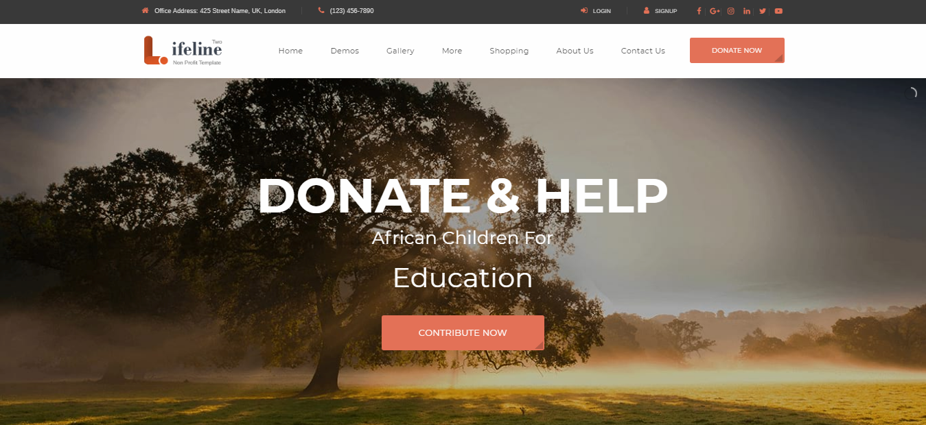 LifeLine2. LifeLine2 Premium Non-profit WordPress theme, Best Non-profit WordPress themes of 2018