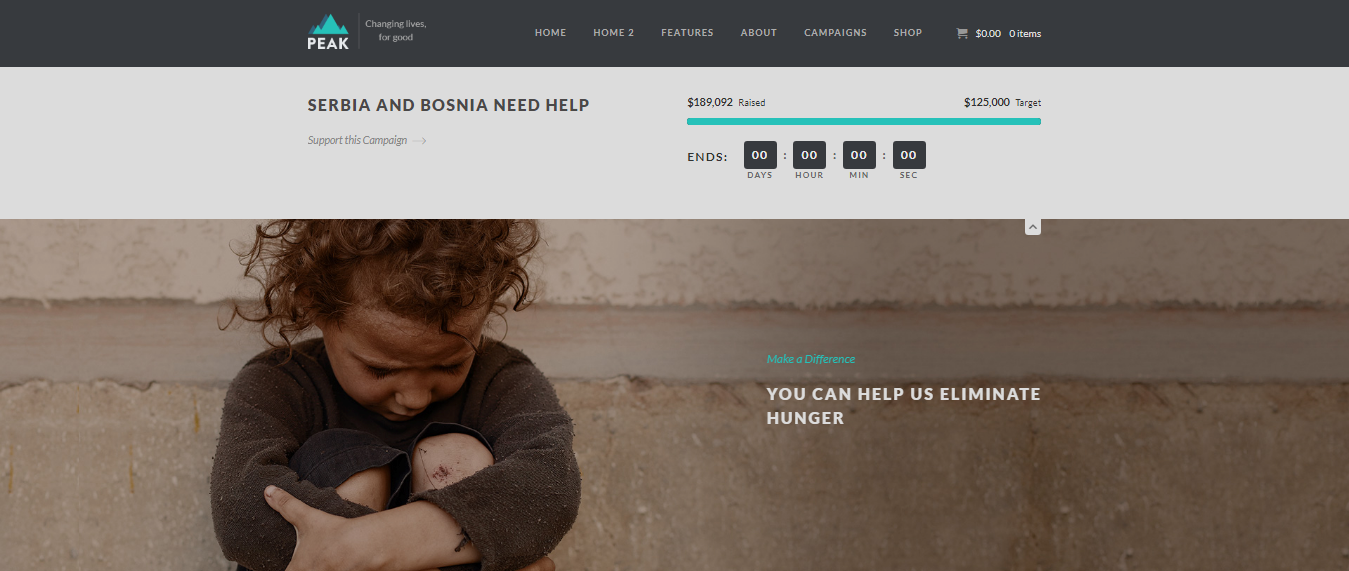Peak-responsive-charity-non-profits-CodePixelz