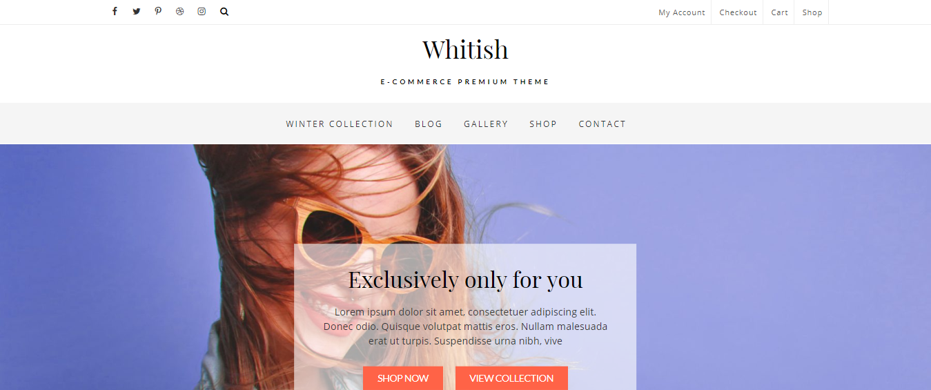 Best WordPress eCommerce themes, Best WooCommerce WordPress themes for your online Store