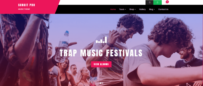 Best premium WordPress themes for musicians