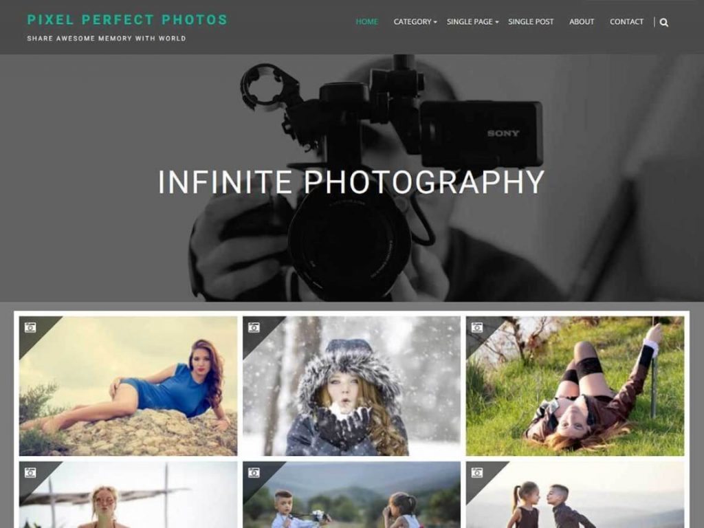 Top-best-Free-photography-theme-WordPress,-InfinitePhotography