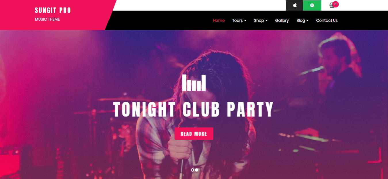 best premium music WordPress themes for musicians, bands, singer and song writer