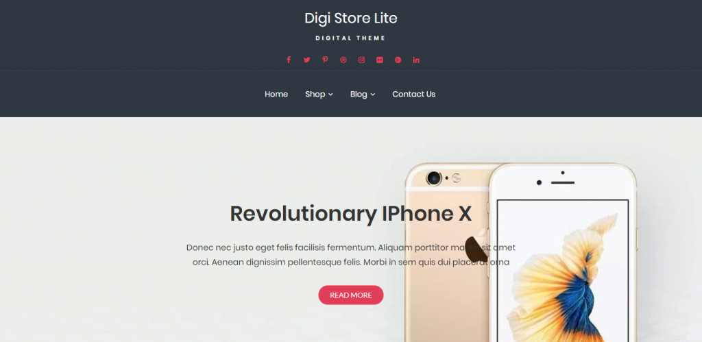 Digi-Store-Lite-free-eCommerce-responsive-business-WordPress-theme-Code-Themes