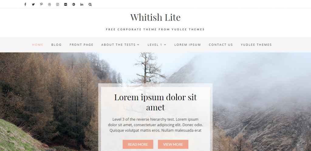 Whitish-Lite-Free-responsive-portfolio-WordPress-blog-business-theme-Code Pixelz