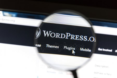 WordPress-Uses-to-builda-website-CodePixelz