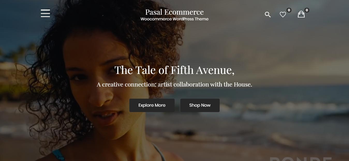 WordPress Black Friday and Cyber Monday Grand Sale - Pasal eCommerce WordPress theme