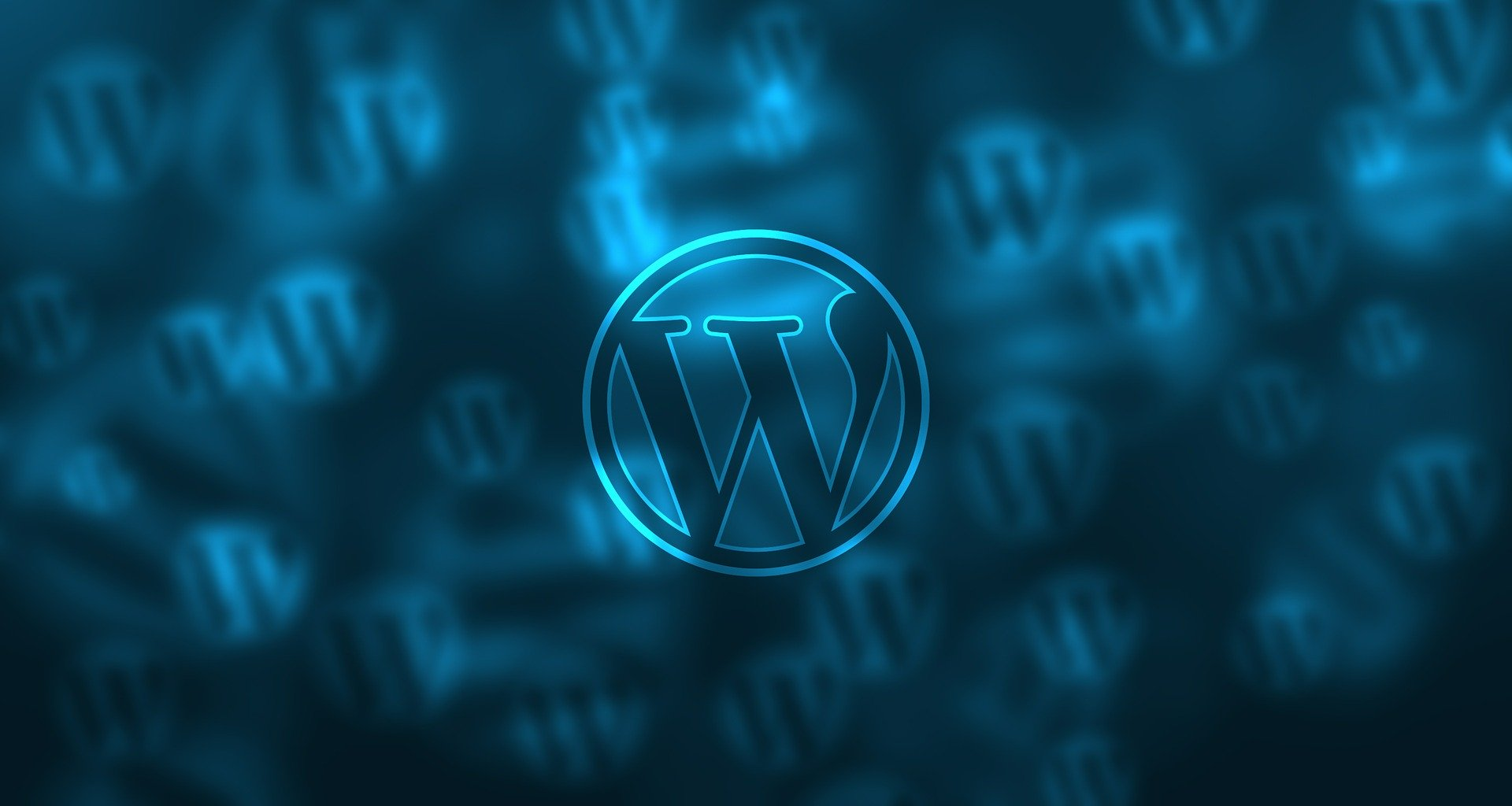 Mistakes Beginner WordPress Users Make-Code Pixelz