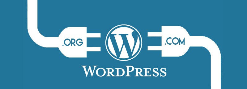 Mistakes Beginner WordPress Users Make-Code Pixelz