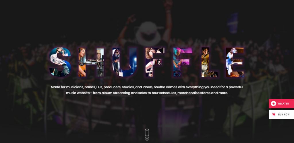 Shuffle-premium-music-WordPress-themes-CodePixelz