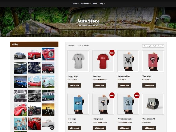 AutoStore-best-free-automobile-WordPress-themes-WPreviewteam